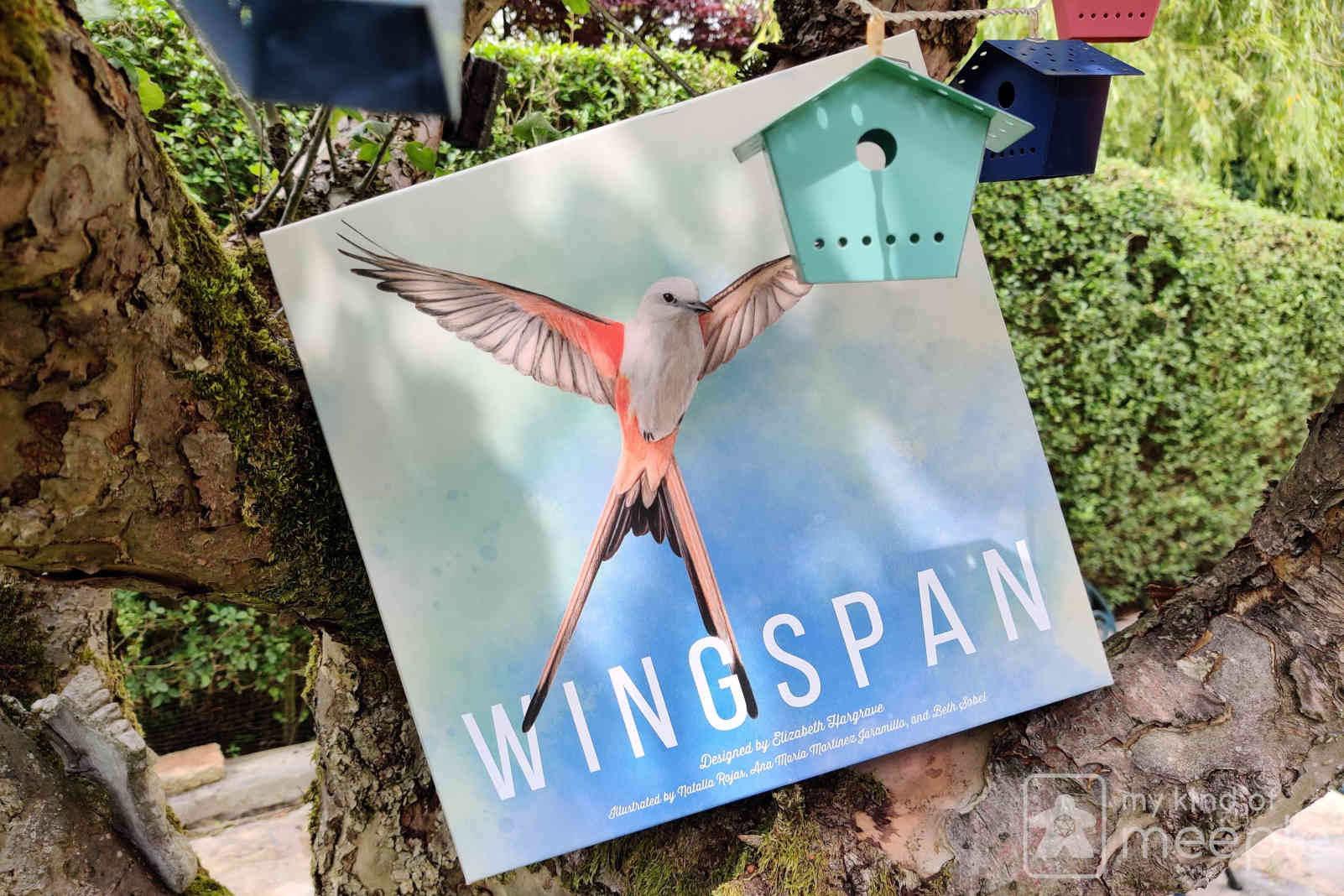 Wingspan board game box in my apple tree