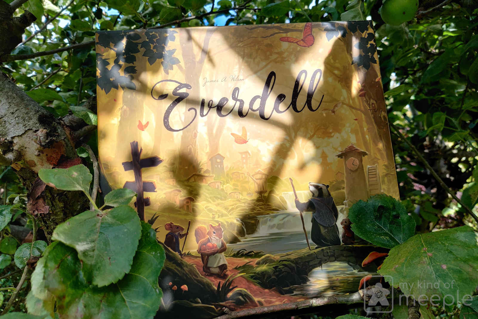 Everdell board game box in tree