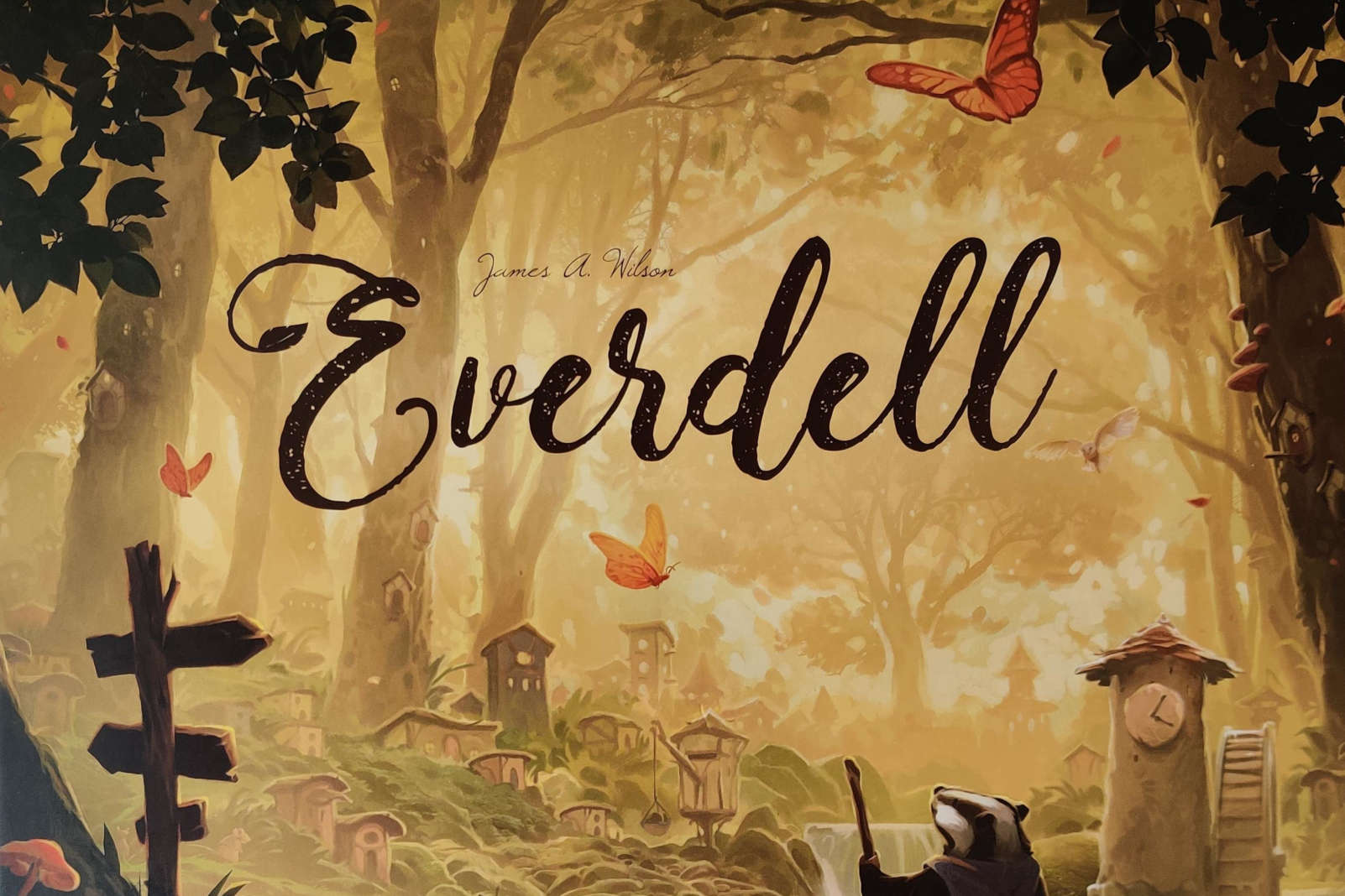 everdell cover box