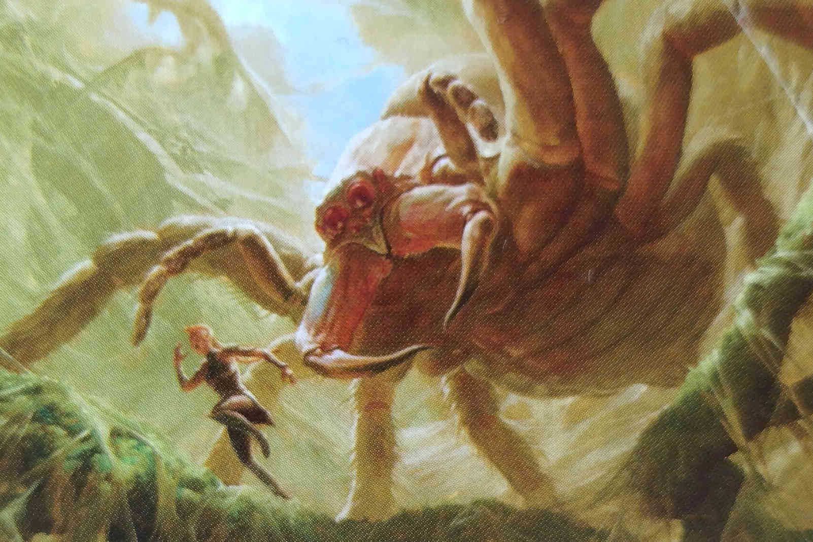 mtg mammoth spider image: wizards of the coast